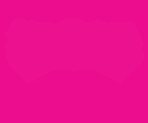 Dian Griesel